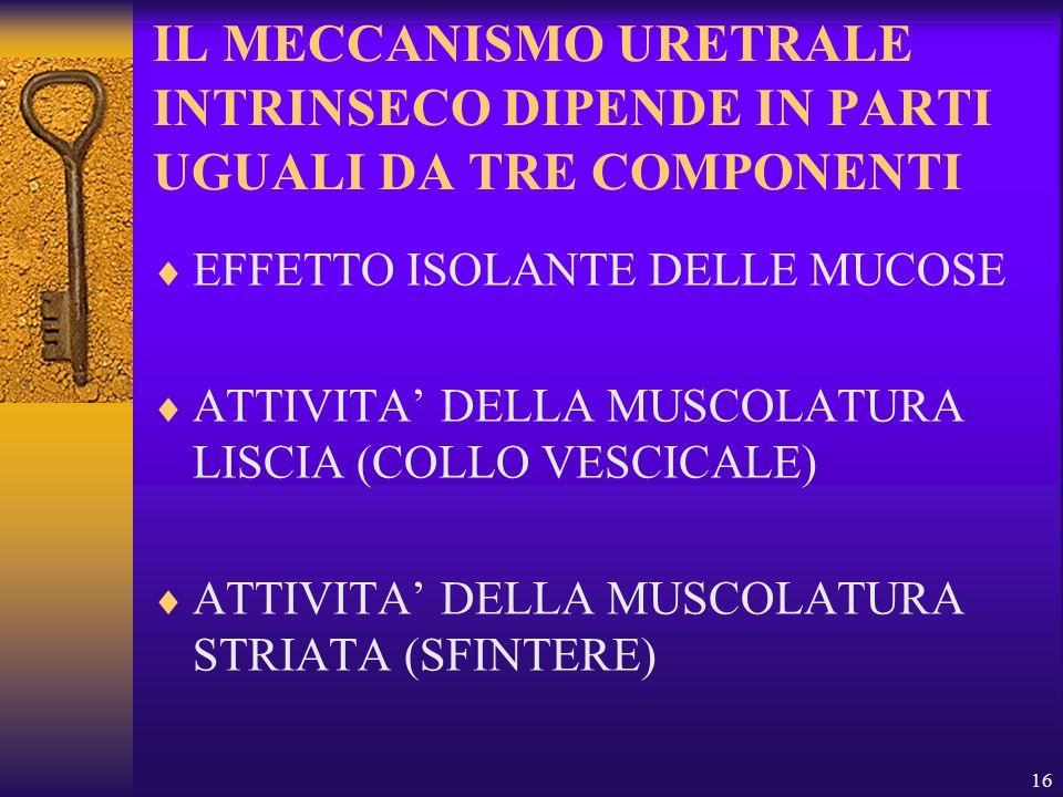 16 IL MECCANISMO URETRALE INTRINSECO DIPENDE IN PARTI UGUALI DA TRE COMPONENTI EFFETTO ISOLANTE DELLE MUCOSE ATTIVITA DELLA MUSCOLATURA LISCIA (COLLO