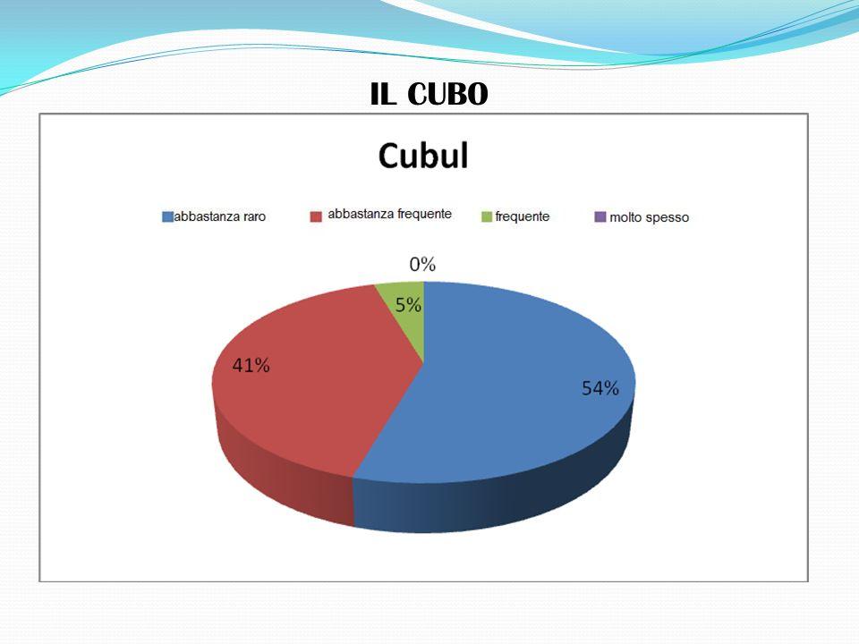 IL CUBO