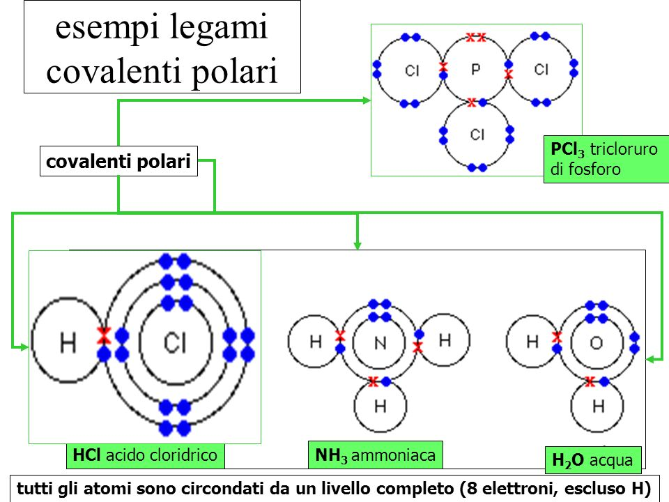 esempi legami covalenti polari HCl acido cloridrico PCl 3 tricloruro di fosforo NH 3 ammoniaca H 2 O acqua covalenti polari tutti gli atomi sono circo