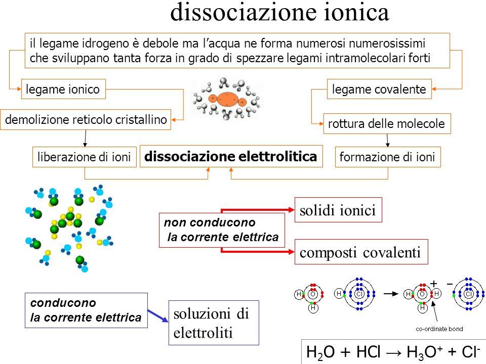 dissociazione ionica il legame idrogeno è debole ma lacqua ne forma numerosi numerosissimi che sviluppano tanta forza in grado di spezzare legami intr