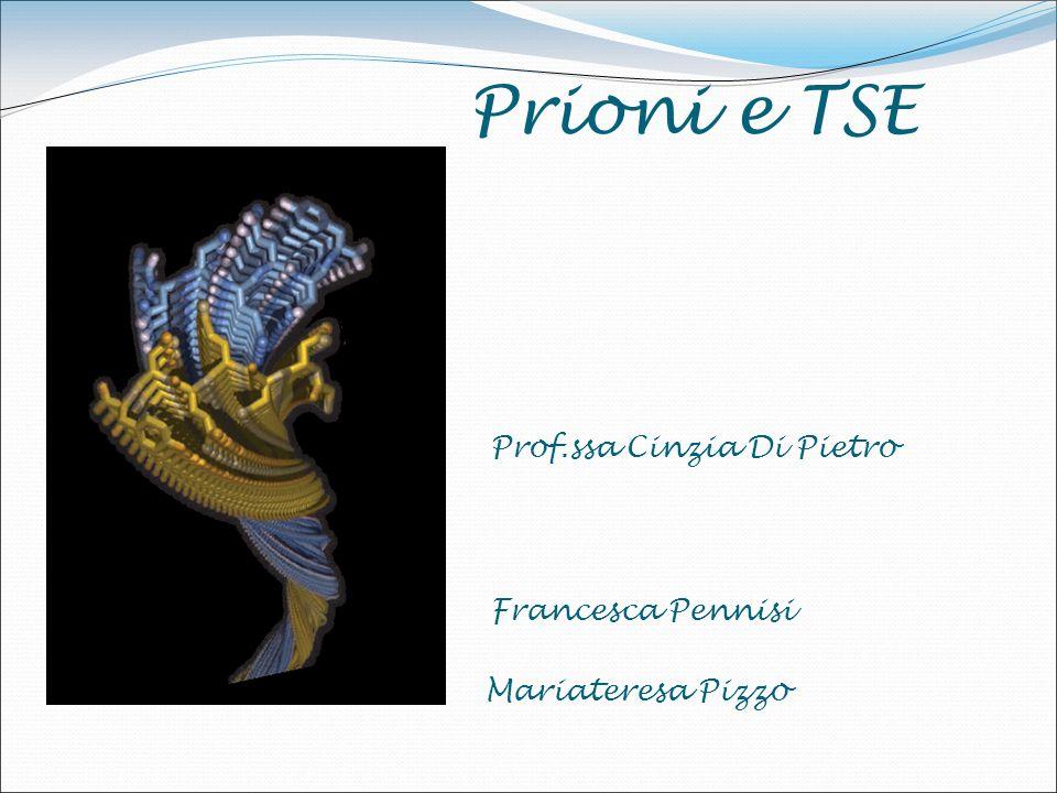 Prioni e TSE Prof.ssa Cinzia Di Pietro Francesca Pennisi Mariateresa Pizzo