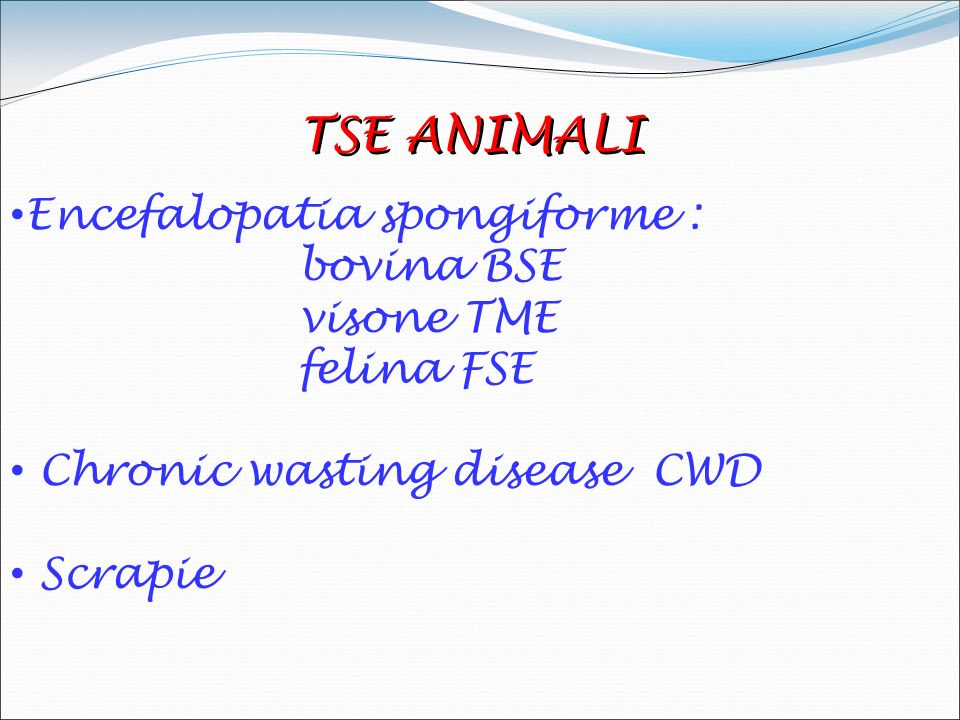 Encefalopatie Spongiformi Trasmissibili (Tse) note come malattie da prioni sono malattie neuro-degenerative