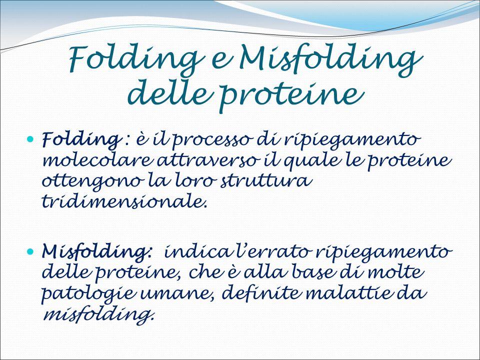Folding e Misfolding delle proteine Folding : è il processo di ripiegamento molecolare attraverso il quale le proteine ottengono la loro struttura tridimensionale.