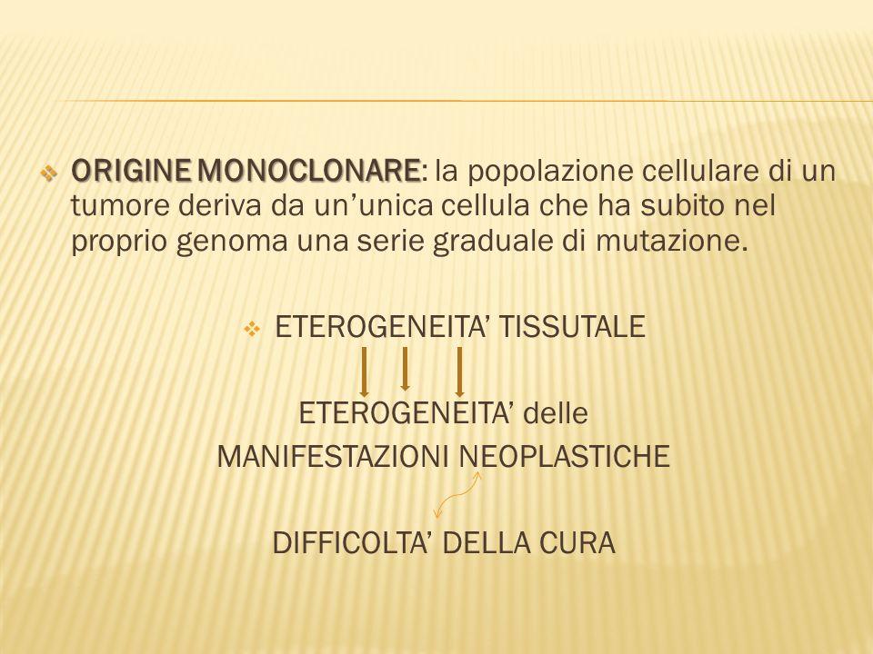 ORIGINE MONOCLONARE ORIGINE MONOCLONARE: la popolazione cellulare di un tumore deriva da ununica cellula che ha subito nel proprio genoma una serie graduale di mutazione.