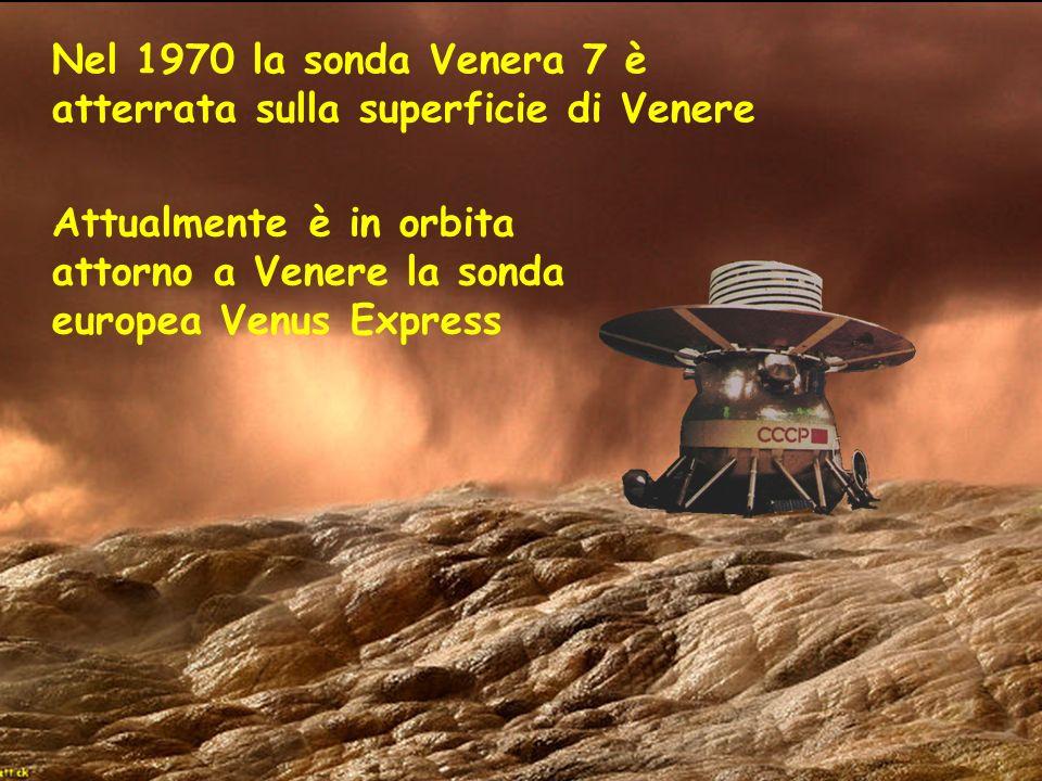 Nel 1970 la sonda Venera 7 è atterrata sulla superficie di Venere Attualmente è in orbita attorno a Venere la sonda europea Venus Express