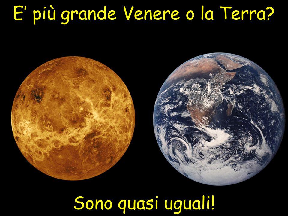 E più grande Venere o la Terra? Sono quasi uguali!