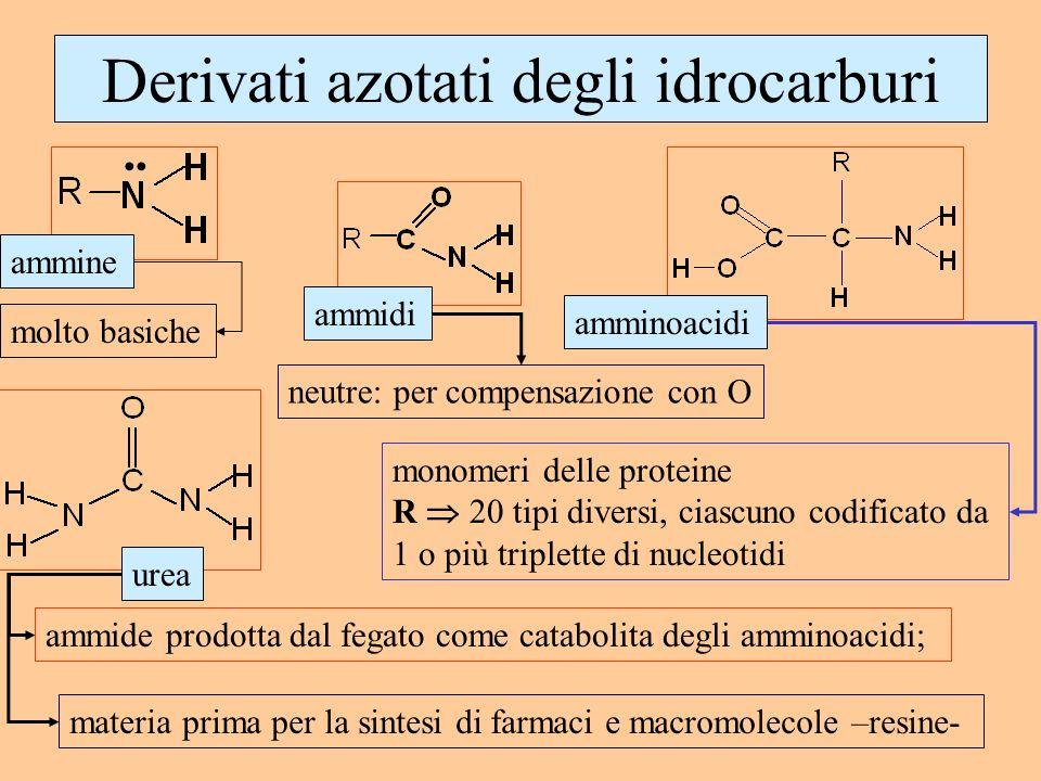 Derivati azotati degli idrocarburi ammine ammidi amminoacidi urea ammide prodotta dal fegato come catabolita degli amminoacidi; materia prima per la s