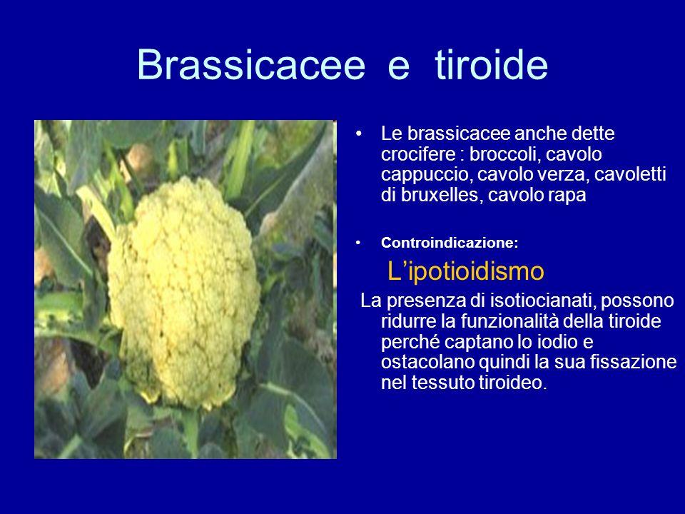 Brassicacee e tiroide Le brassicacee anche dette crocifere : broccoli, cavolo cappuccio, cavolo verza, cavoletti di bruxelles, cavolo rapa Controindic