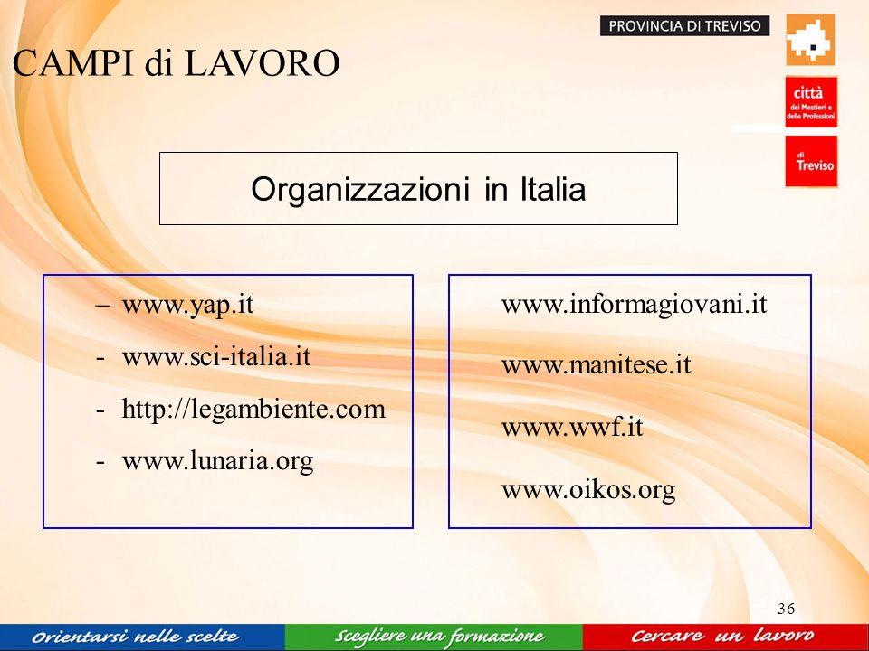 36 CAMPI di LAVORO Organizzazioni in Italia –www.yap.it -www.sci-italia.it -http://legambiente.com -www.lunaria.org www.informagiovani.it www.manitese.it www.wwf.it www.oikos.org