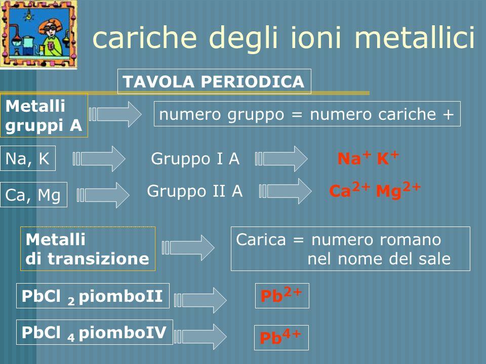 cariche degli ioni metallici TAVOLA PERIODICA Metalli gruppi A Metalli di transizione Na, K Gruppo I A Na + K + Ca, Mg Gruppo II A Ca 2+ Mg 2+ numero