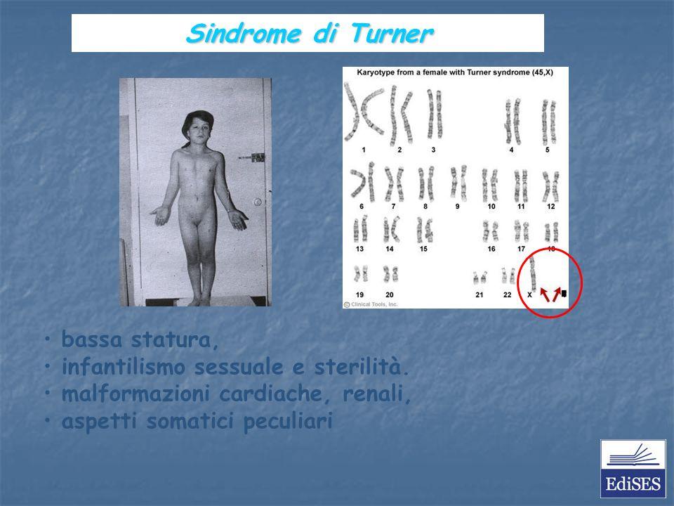 Martini – Fondamenti di Anatomia e Fisiologia – Capitolo 15 bassa statura, infantilismo sessuale e sterilità.
