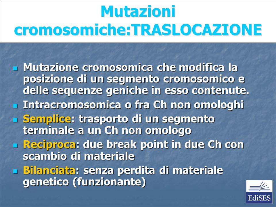 Martini – Fondamenti di Anatomia e Fisiologia – Capitolo 15 Mutazioni cromosomiche:TRASLOCAZIONE Mutazione cromosomica che modifica la posizione di un segmento cromosomico e delle sequenze geniche in esso contenute.