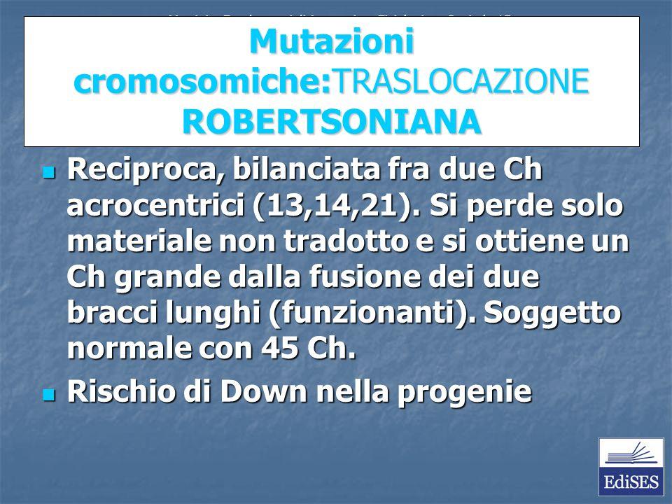 Mutazioni cromosomiche:TRASLOCAZIONE ROBERTSONIANA Reciproca, bilanciata fra due Ch acrocentrici (13,14,21).