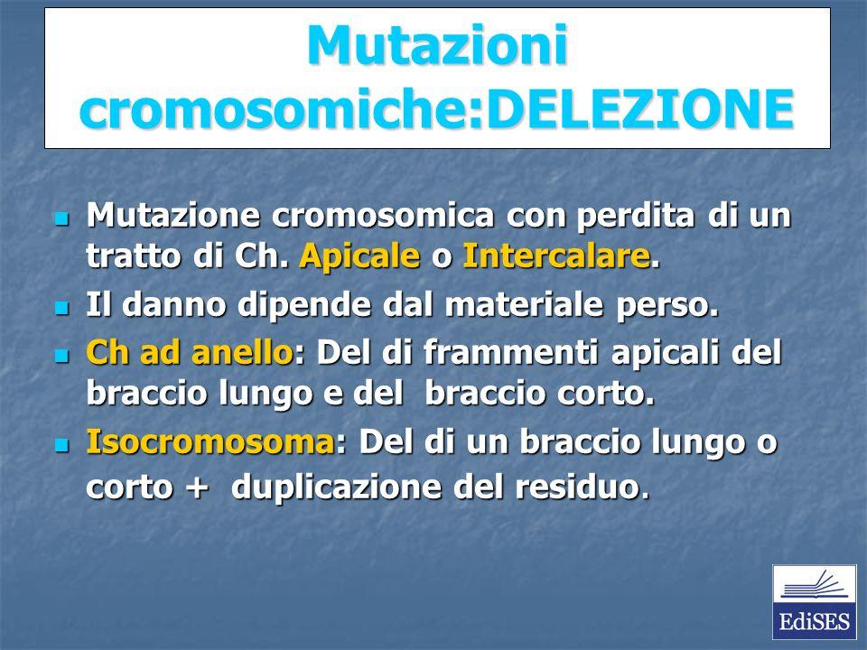 Martini – Fondamenti di Anatomia e Fisiologia – Capitolo 15 Mutazioni cromosomiche:DELEZIONE Mutazione cromosomica con perdita di un tratto di Ch.