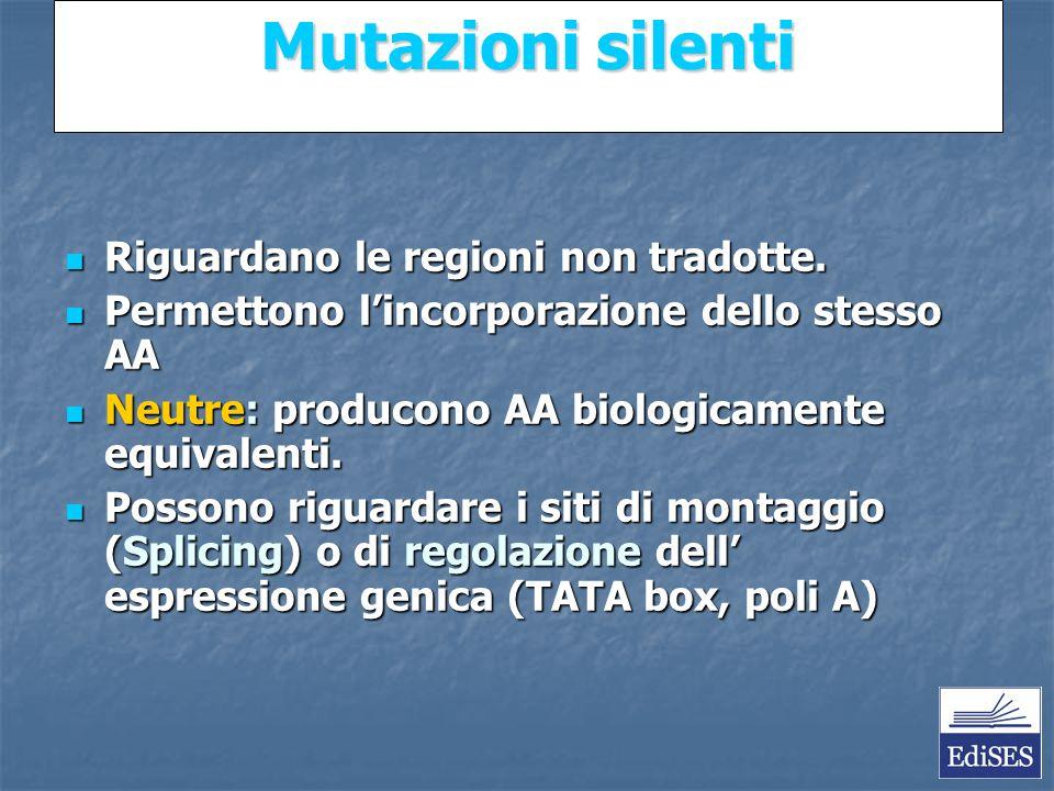 Martini – Fondamenti di Anatomia e Fisiologia – Capitolo 15 Mutazioni silenti Riguardano le regioni non tradotte.
