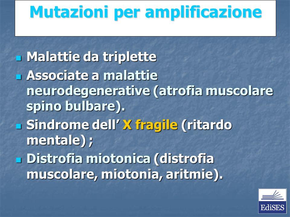 Martini – Fondamenti di Anatomia e Fisiologia – Capitolo 15 Mutazioni per amplificazione Malattie da triplette Malattie da triplette Associate a malattie neurodegenerative (atrofia muscolare spino bulbare).