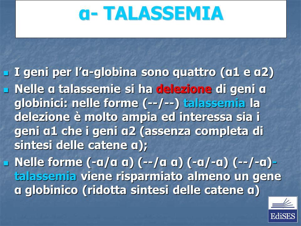 Martini – Fondamenti di Anatomia e Fisiologia – Capitolo 15 α- TALASSEMIA I geni per lα-globina sono quattro (α1 e α2) I geni per lα-globina sono quattro (α1 e α2) Nelle α talassemie si ha delezione di geni α globinici: nelle forme (--/--) talassemia la delezione è molto ampia ed interessa sia i geni α1 che i geni α2 (assenza completa di sintesi delle catene α); Nelle α talassemie si ha delezione di geni α globinici: nelle forme (--/--) talassemia la delezione è molto ampia ed interessa sia i geni α1 che i geni α2 (assenza completa di sintesi delle catene α); Nelle forme (-α/α α) (--/α α) (-α/-α) (--/-α)- talassemia viene risparmiato almeno un gene α globinico (ridotta sintesi delle catene α) Nelle forme (-α/α α) (--/α α) (-α/-α) (--/-α)- talassemia viene risparmiato almeno un gene α globinico (ridotta sintesi delle catene α)