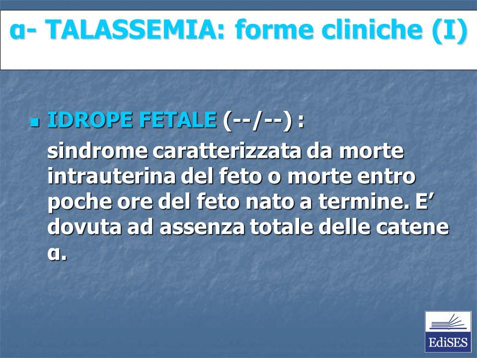 Martini – Fondamenti di Anatomia e Fisiologia – Capitolo 15 α- TALASSEMIA: forme cliniche (I) IDROPE FETALE (--/--) : IDROPE FETALE (--/--) : sindrome caratterizzata da morte intrauterina del feto o morte entro poche ore del feto nato a termine.