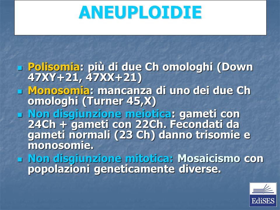 Martini – Fondamenti di Anatomia e Fisiologia – Capitolo 15 ANEUPLOIDIE Polisomia: più di due Ch omologhi (Down 47XY+21, 47XX+21) Polisomia: più di due Ch omologhi (Down 47XY+21, 47XX+21) Monosomia: mancanza di uno dei due Ch omologhi (Turner 45,X) Monosomia: mancanza di uno dei due Ch omologhi (Turner 45,X) Non disgiunzione meiotica: gameti con 24Ch + gameti con 22Ch.