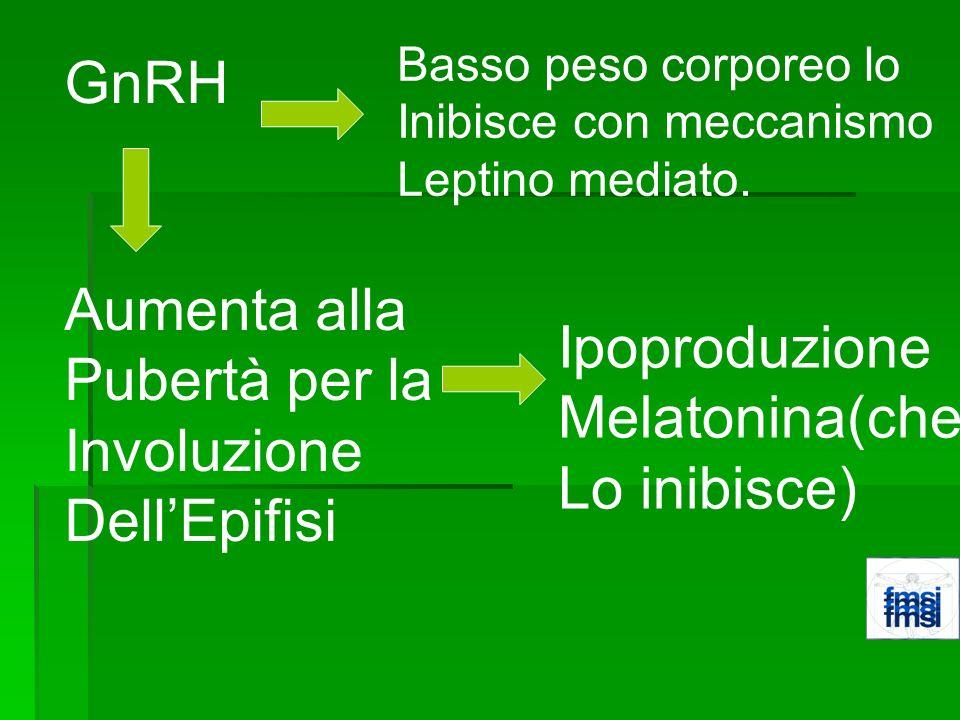 GnRH Aumenta alla Pubertà per la Involuzione DellEpifisi Ipoproduzione Melatonina(che Lo inibisce) Basso peso corporeo lo Inibisce con meccanismo Lept