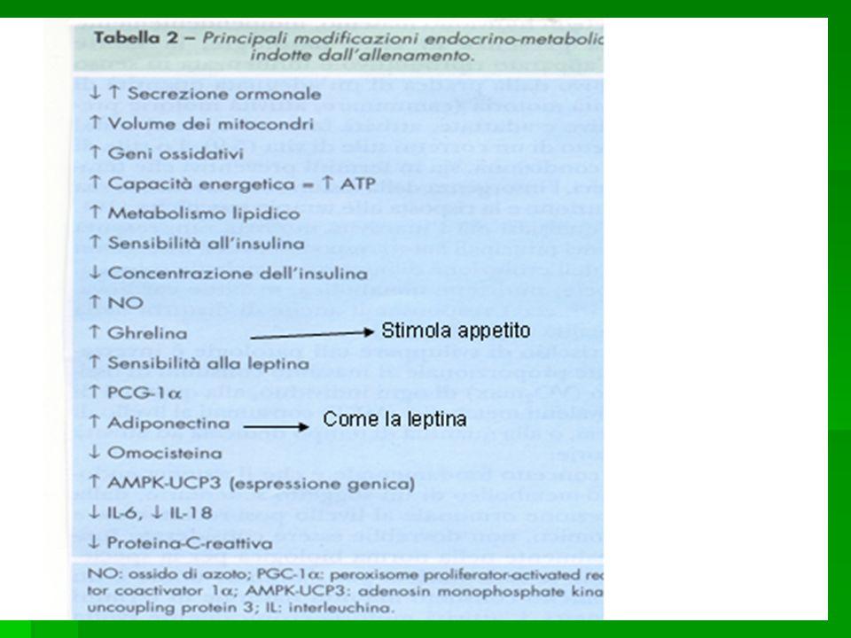 Stimolano la Produzione di Prolattina.