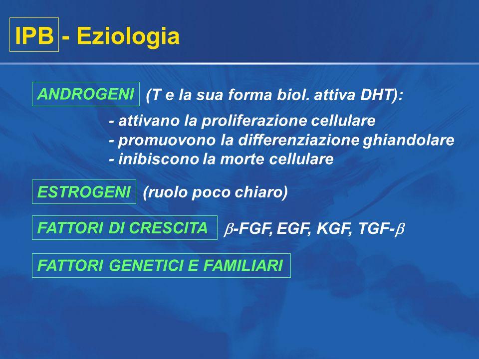 IPB - Eziologia (T e la sua forma biol. attiva DHT): - attivano la proliferazione cellulare - promuovono la differenziazione ghiandolare - inibiscono