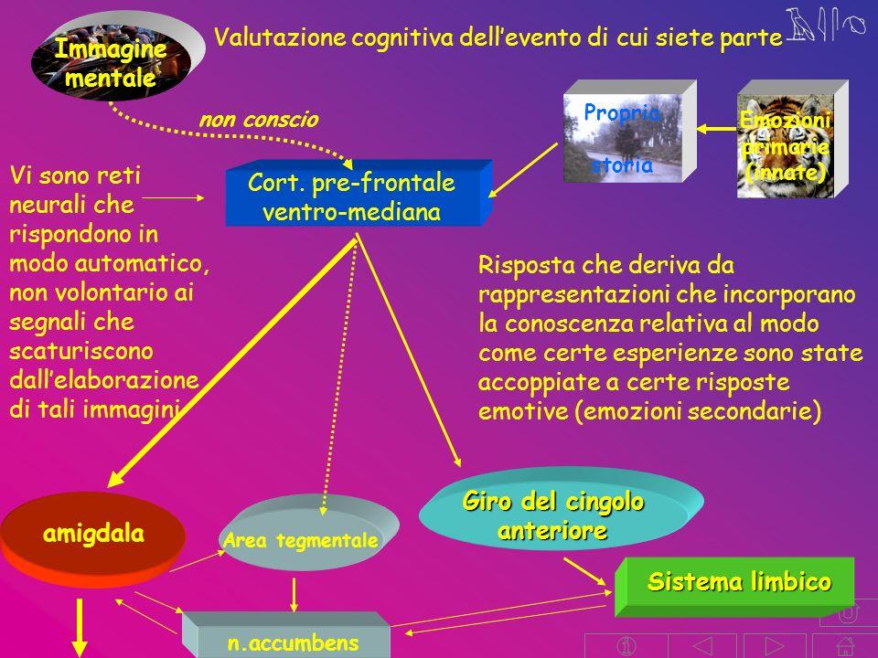 Immagine mentale Valutazione cognitiva dellevento di cui siete parte Cort.