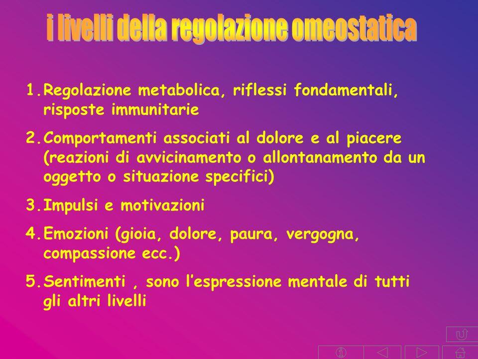 1.Regolazione metabolica, riflessi fondamentali, risposte immunitarie 2.Comportamenti associati al dolore e al piacere (reazioni di avvicinamento o allontanamento da un oggetto o situazione specifici) 3.Impulsi e motivazioni 4.Emozioni (gioia, dolore, paura, vergogna, compassione ecc.) 5.Sentimenti, sono lespressione mentale di tutti gli altri livelli