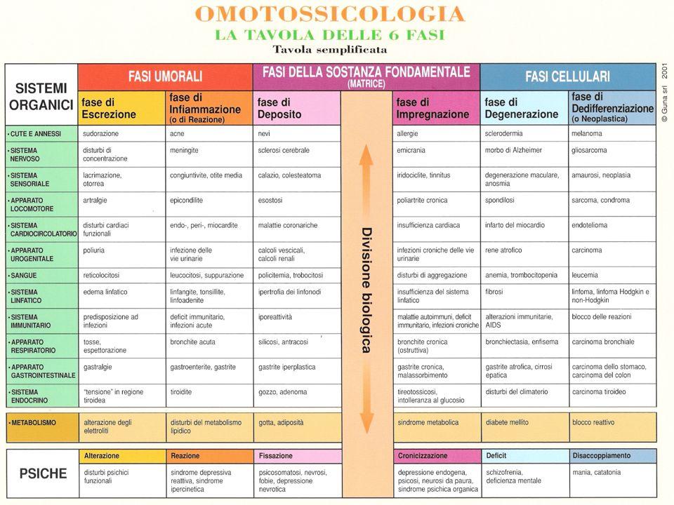Partendo da questi concetti di base lOmotossicologia ha dato un ruolo preminente allo studio della matrice cellulare e ha attribuito molti sintomi clinici allintossicazione di tale matrice che creava secondariamente problemi di comunicazione, nutrizione, sopravvivenza per le varie cellule.