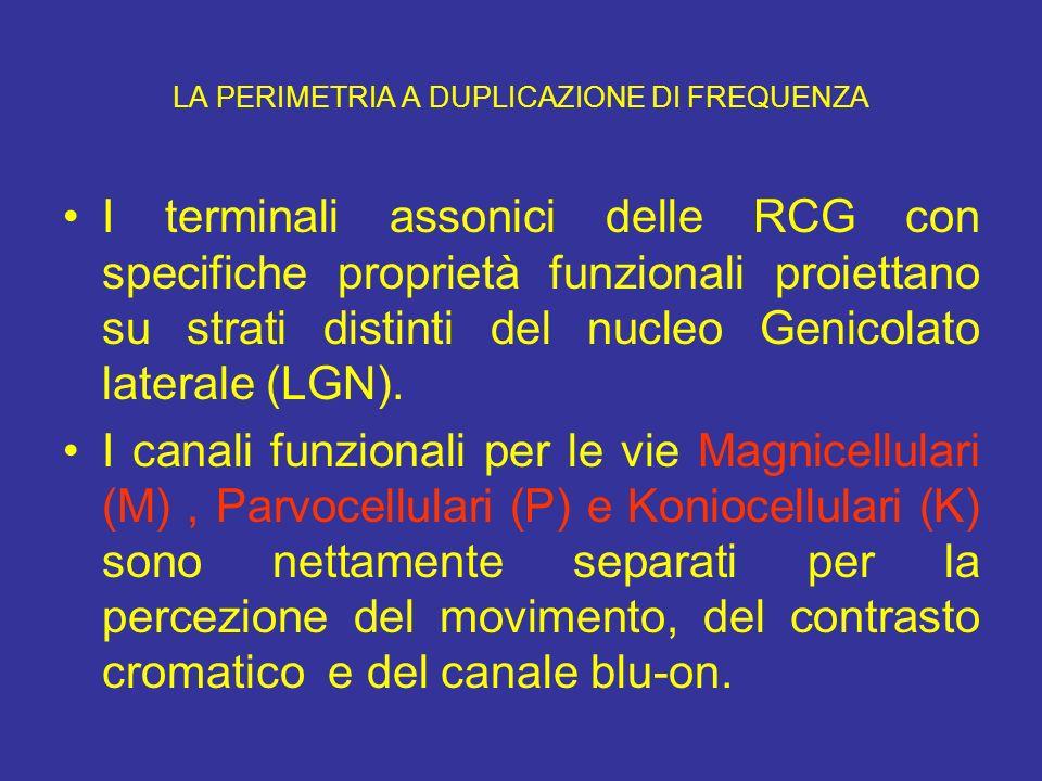 LA PERIMETRIA A DUPLICAZIONE DI FREQUENZA I terminali assonici delle RCG con specifiche proprietà funzionali proiettano su strati distinti del nucleo