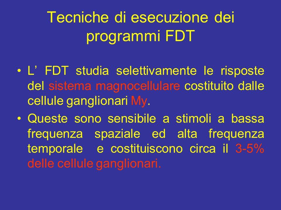 Tecniche di esecuzione dei programmi FDT L FDT studia selettivamente le risposte del sistema magnocellulare costituito dalle cellule ganglionari My. Q