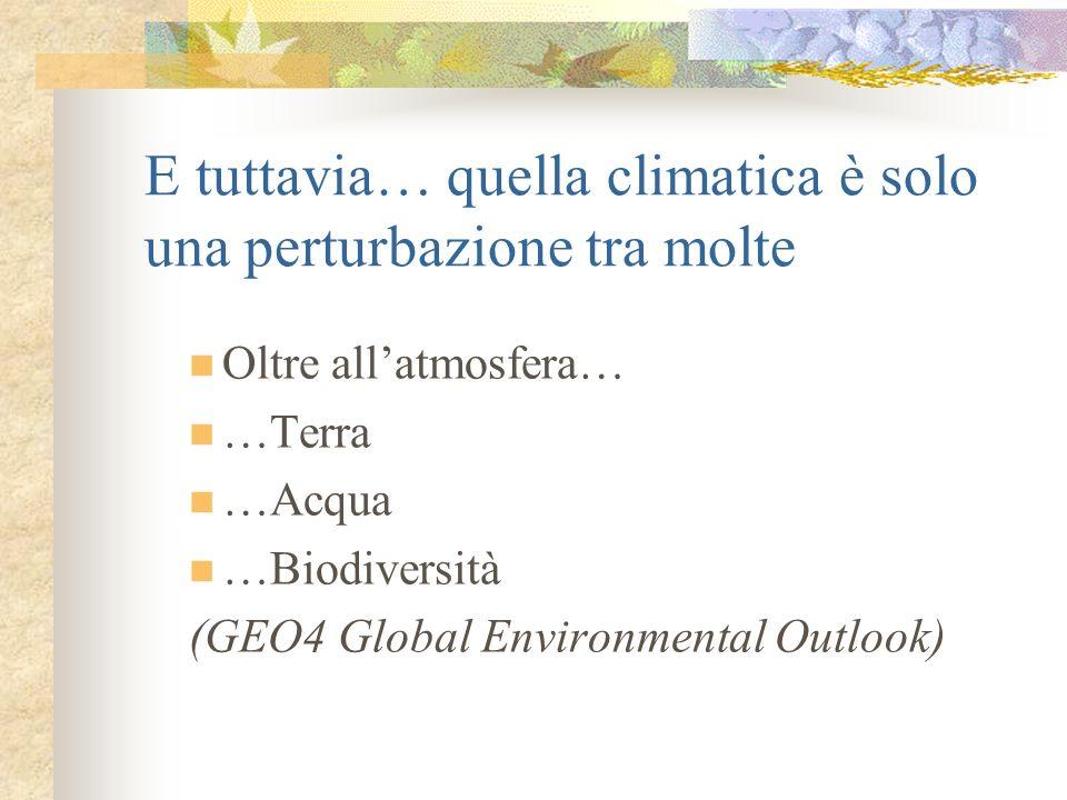 E tuttavia… quella climatica è solo una perturbazione tra molte Oltre allatmosfera… …Terra …Acqua …Biodiversità (GEO4 Global Environmental Outlook)