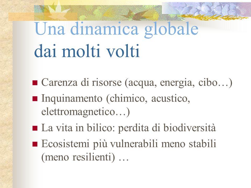 Una dinamica globale dai molti volti Carenza di risorse (acqua, energia, cibo…) Inquinamento (chimico, acustico, elettromagnetico…) La vita in bilico: