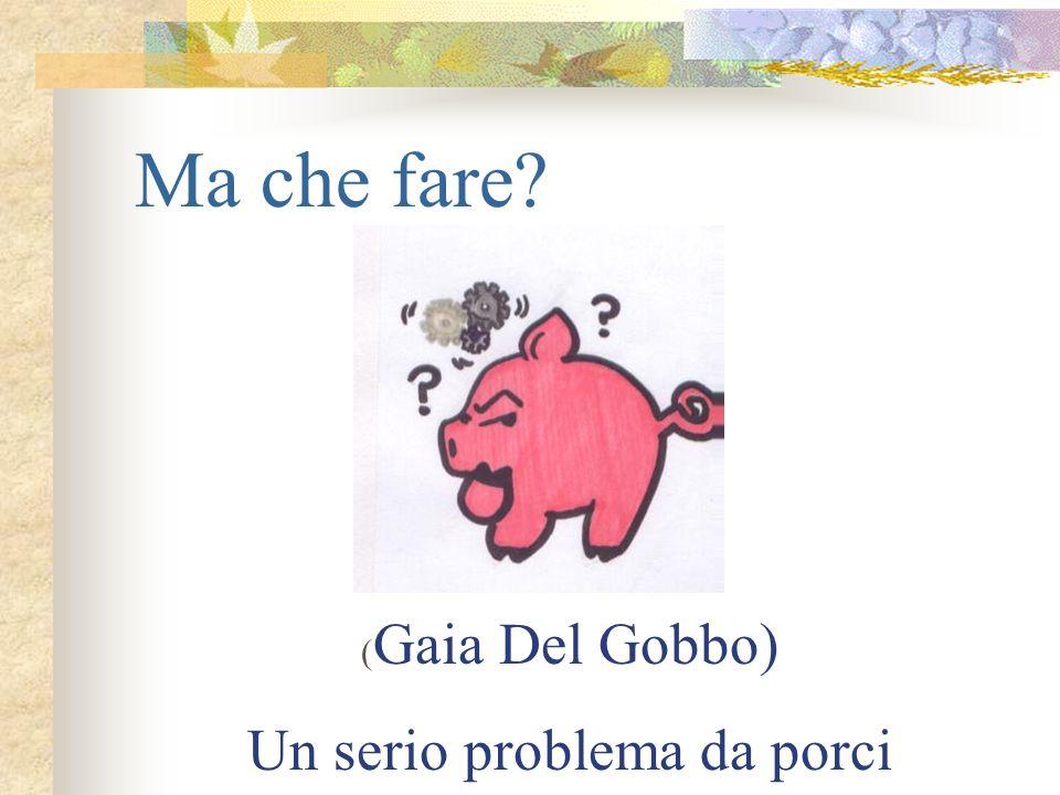 Ma che fare? ( Gaia Del Gobbo) Un serio problema da porci