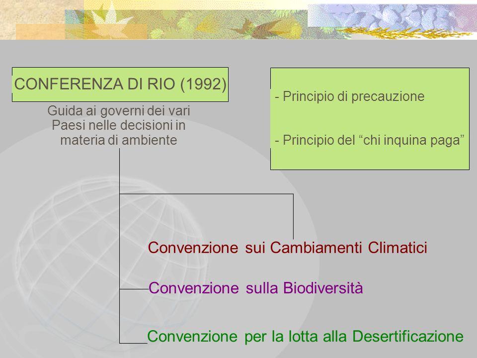 CONFERENZA DI RIO (1992) Guida ai governi dei vari Paesi nelle decisioni in materia di ambiente - Principio di precauzione - Principio del chi inquina