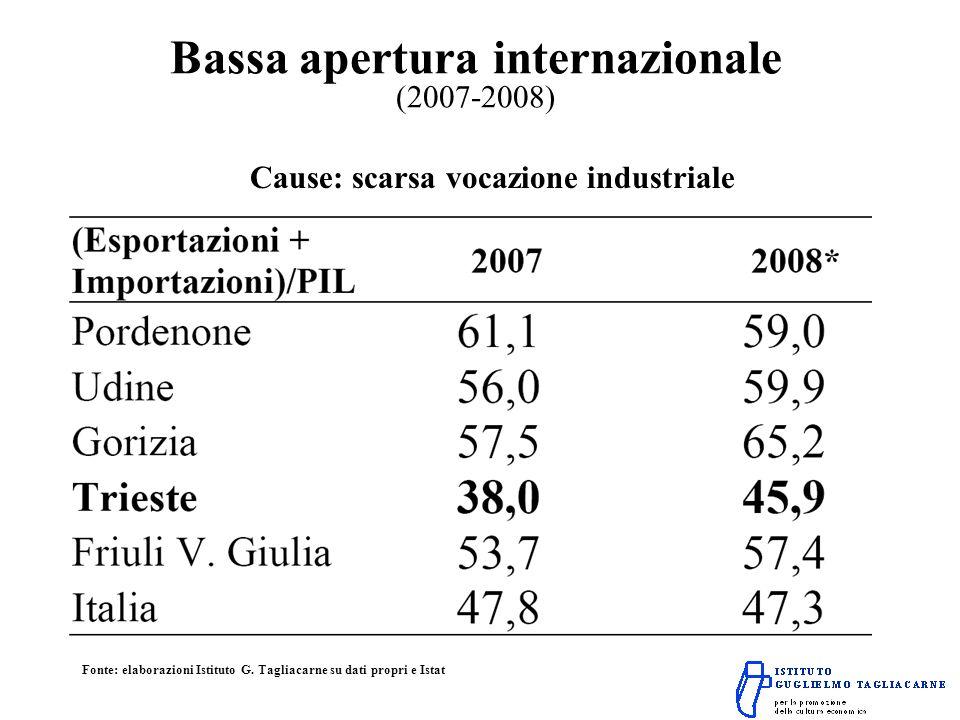 Bassa apertura internazionale (2007-2008) Cause: scarsa vocazione industriale Fonte: elaborazioni Istituto G.