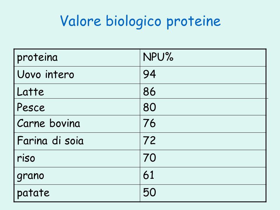 Valore biologico proteine proteinaNPU% Uovo intero94 Latte Pesce 86 80 Carne bovina76 Farina di soia72 riso70 grano61 patate50