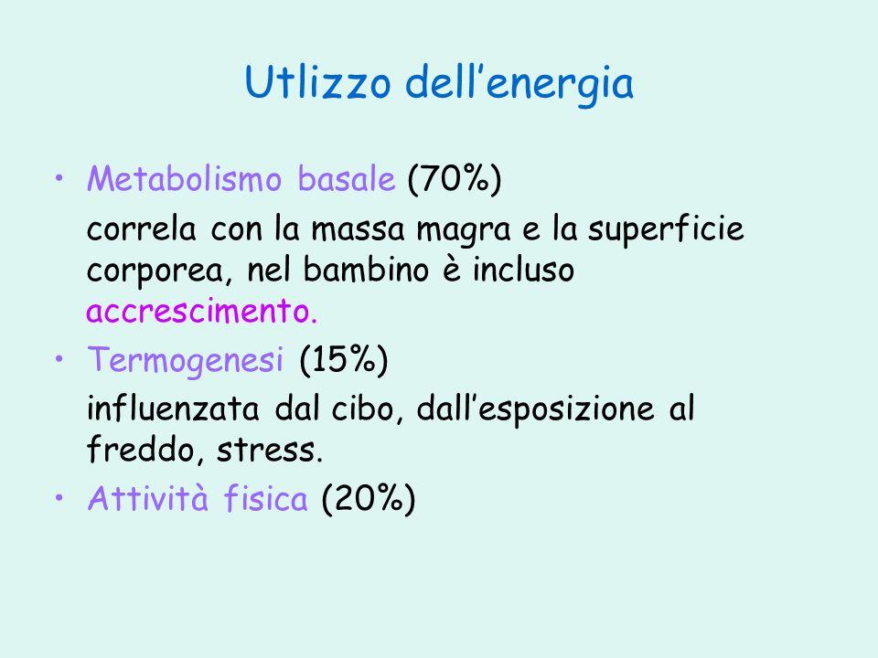 Utlizzo dellenergia Metabolismo basale (70%) correla con la massa magra e la superficie corporea, nel bambino è incluso accrescimento. Termogenesi (15