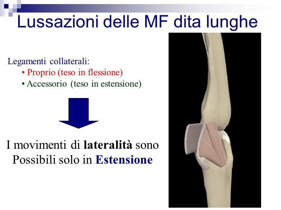 Legamenti collaterali: Proprio (teso in flessione) Accessorio (teso in estensione) I movimenti di lateralità sono Possibili solo in Estensione