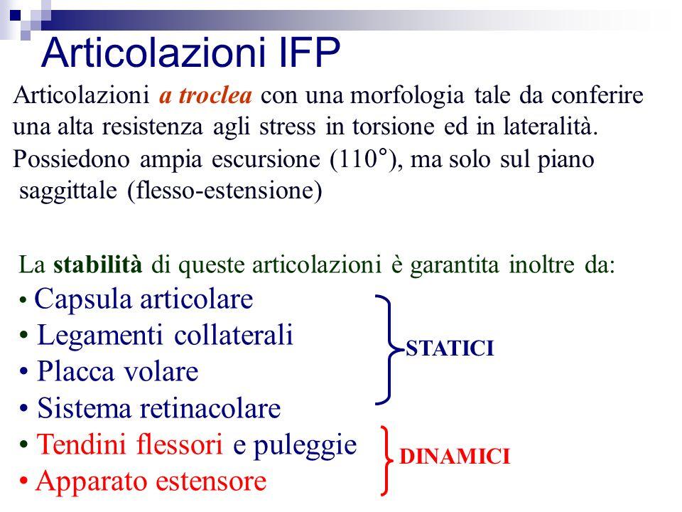 Articolazioni IFP Articolazioni a troclea con una morfologia tale da conferire una alta resistenza agli stress in torsione ed in lateralità.