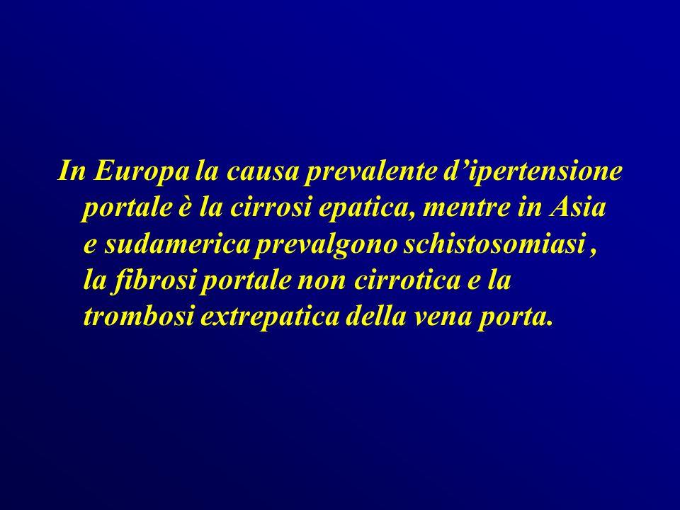 Splenomegalia Si associa costantemente allipertensione portale, tanto da esserne un indizio sospetto.