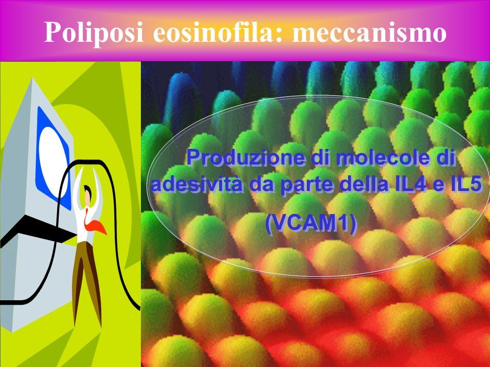 Poliposi eosinofila: meccanismo Produzione di molecole di adesività da parte della IL4 e IL5 (VCAM1) Produzione di molecole di adesività da parte dell