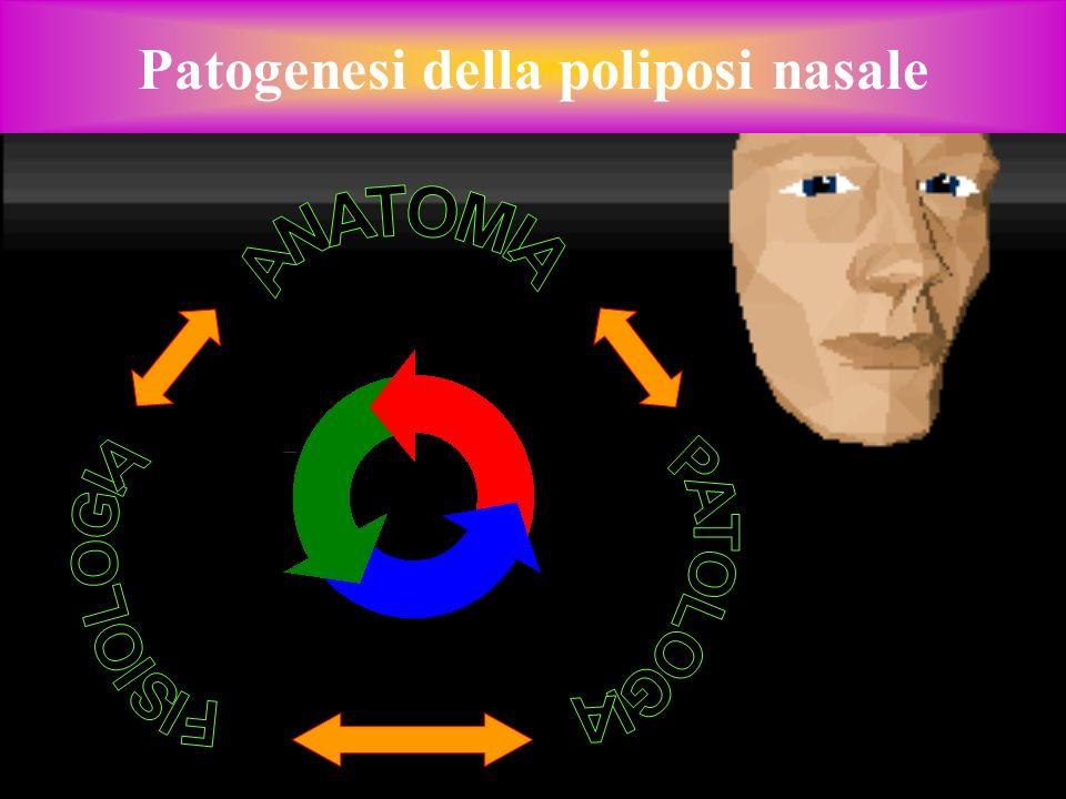 Patogenesi della poliposi nasale