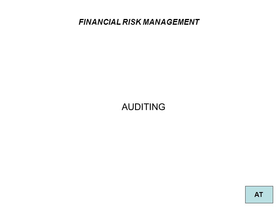 FINANCIAL RISK MANAGEMENT AT AUDITING