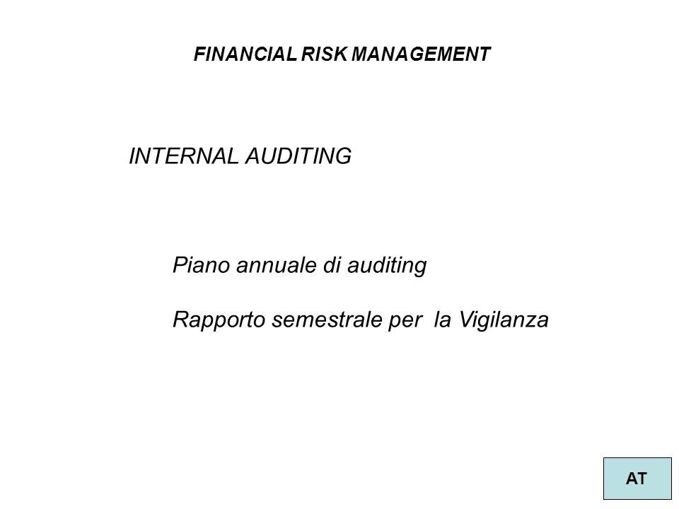 FINANCIAL RISK MANAGEMENT AT INTERNAL AUDITING Piano annuale di auditing Rapporto semestrale per la Vigilanza