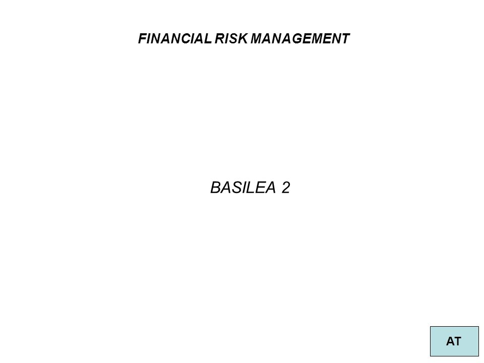 FINANCIAL RISK MANAGEMENT AT BASILEA 2