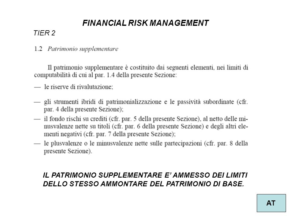 FINANCIAL RISK MANAGEMENT AT IL PATRIMONIO SUPPLEMENTARE E AMMESSO DEI LIMITI DELLO STESSO AMMONTARE DEL PATRIMONIO DI BASE. TIER 2