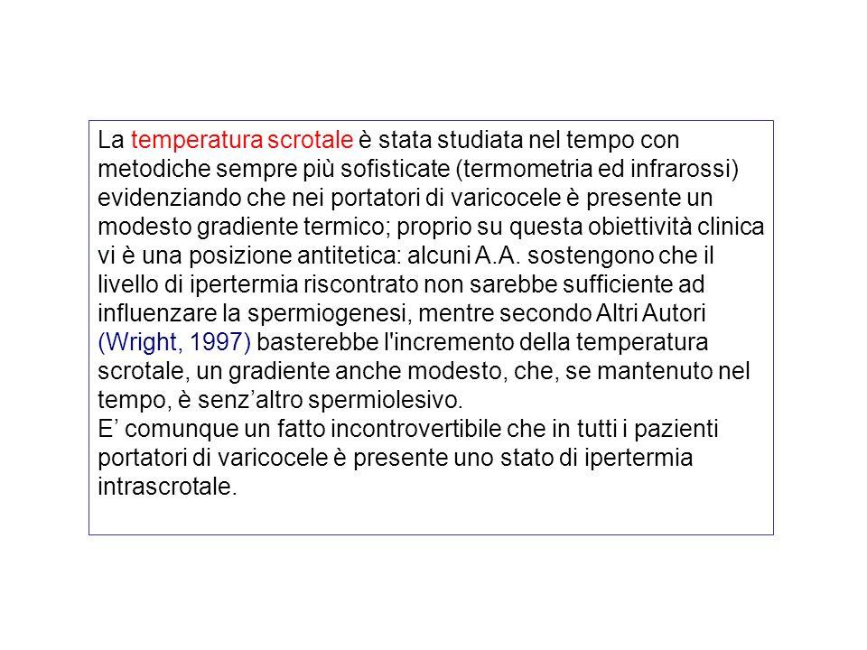 1) ipertermia scrotale 2) ipossia gonadica 3) reflusso di metaboliti tossici surrenalici nella vena spermatica 4) ipofunzione delle cellule di Leydig