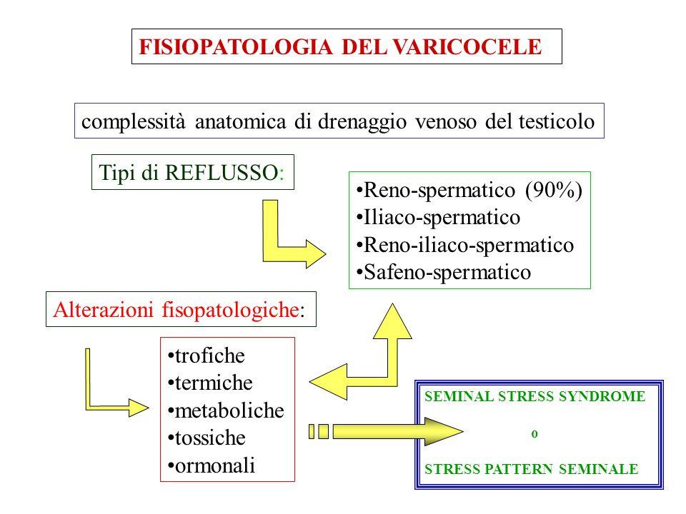 FISIOPATOLOGIA DEL VARICOCELE complessità anatomica di drenaggio venoso del testicolo Tipi di REFLUSSO: Reno-spermatico (90%) Iliaco-spermatico Reno-iliaco-spermatico Safeno-spermatico Alterazioni fisopatologiche: trofiche termiche metaboliche tossiche ormonali SEMINAL STRESS SYNDROME o STRESS PATTERN SEMINALE