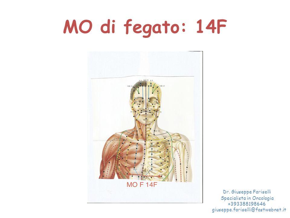 MO di fegato: 14F Dr. Giuseppe Fariselli Specialista in Oncologia +393388198646 giuseppe.fariselli@fastwebnet.it